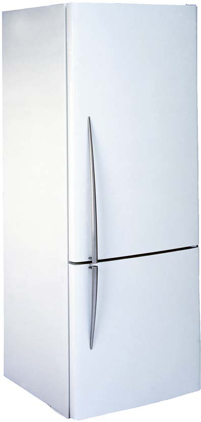 Appliance repair-Fridge-freezer E372BL by Fisher&Paykel